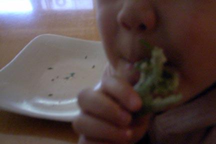 2009山菜由田百々子